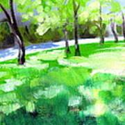Summer Sunshine In South Carolina Art Print