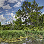 Summer Time At Moraine View State Park Art Print