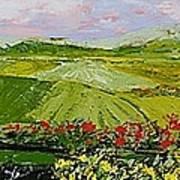 Summer Valley Art Print