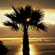 Sun And Palm And Sea Art Print