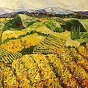 Sun Harvest Art Print