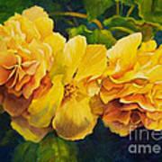 Sun Kissed Yellow Begonias Art Print