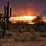 Sun Rays Over The Sonoran Desert  Art Print