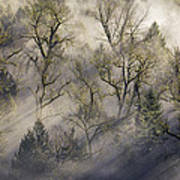 Sun Rays Through The Morning Mist Art Print