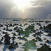 Sun Shining On A Field Of Lava Rocks Art Print