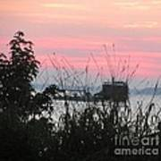 Sun To Rise On The Chesapeake Bay Art Print