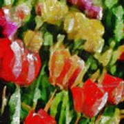 Sunbathing Tulips Art Print