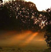 Sunbeams And Fog Art Print