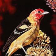 Sunbright Songbird Art Print
