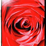 Sunburst On Red Rose With Framing Art Print
