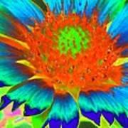Sunburst - Photopower 2244 Art Print