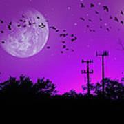 Sundown Fantasy - Violet Art Print