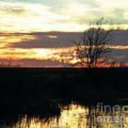 Sundown Lacassine Nwr Art Print