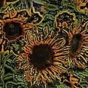 Sunflower 18 Art Print
