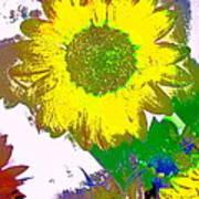 Sunflower 30 Art Print