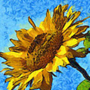 Sunflower Abstract Print by Unknown