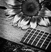 Sunflower And Guitar Art Print