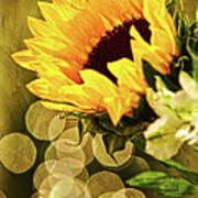 Sunflower And The Lights Art Print