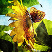 Sunflower Butterfly And Bee Art Print