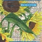 Sunflower Dictionary 1 Art Print by Debbie DeWitt