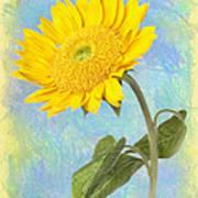 Sunflower Fantasy Art Print