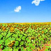 Sunflower Fields Forever Art Print