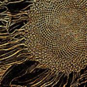 Sunflower Gold Leaf Sketch Art Print