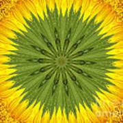 Sunflower Kaleidoscope 3 Art Print