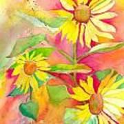 Sunflower Art Print by Kelly Perez