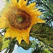 Sunflower Light Art Print