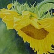 Sunflower Original Oil Painting Colorful Bright Sunflowers Art Floral Artist K. Joann Russell  Art Print