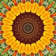 Sunflower Power Art Print