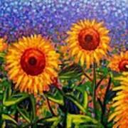 Sunflower Scape Art Print
