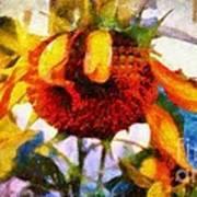 Sunflower Tender Art Print