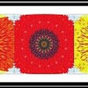 Sunflower Trio - Triptych - Flowers Art Print