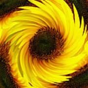 Sunflower Twirl Art Print