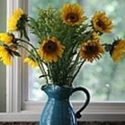 Sunflower Window Art Print by Paula Rountree Bischoff