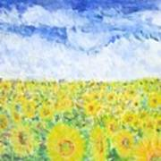Sunflowers In A Field In  Texas Art Print