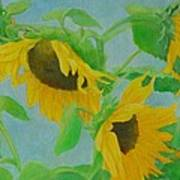 Sunflowers In The Wind 2 Art Print