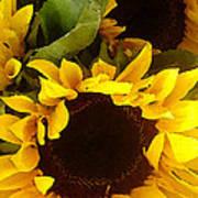 Sunflowers Tall Art Print