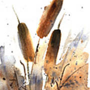 Sunlit Cattails Art Print by Vickie Sue Cheek