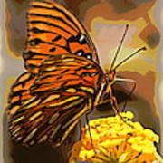 Sunlite Orange Butterfly Art Print