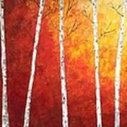 Sunset Birches Art Print