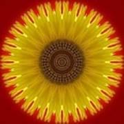 Sunny Kaleidoscope Art Print