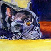 Sunny Patch French Bulldog Art Print