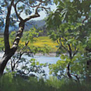 Sunny River Art Print