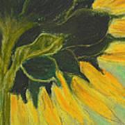 Sunny Side Up Art Print by Cori Solomon