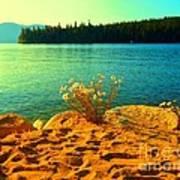 Sunrise At Daisy Lake Art Print