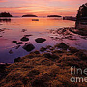 Sunrise At Tenants Harbor Art Print