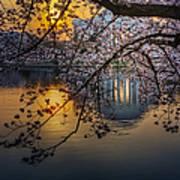 Sunrise At The Thomas Jefferson Memorial Art Print